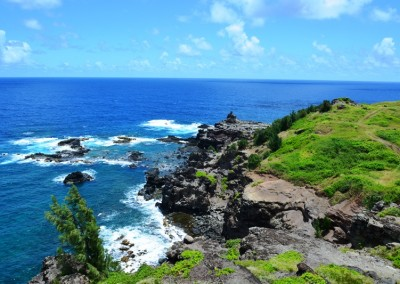 Stardust Hawaii Discounted Tours (12)