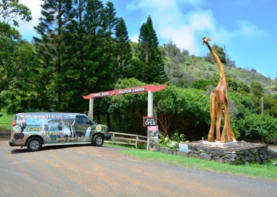Stardust Hawaii Discounted Tours (15)